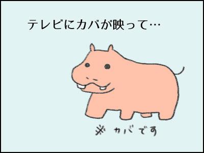 20170122_01.jpg